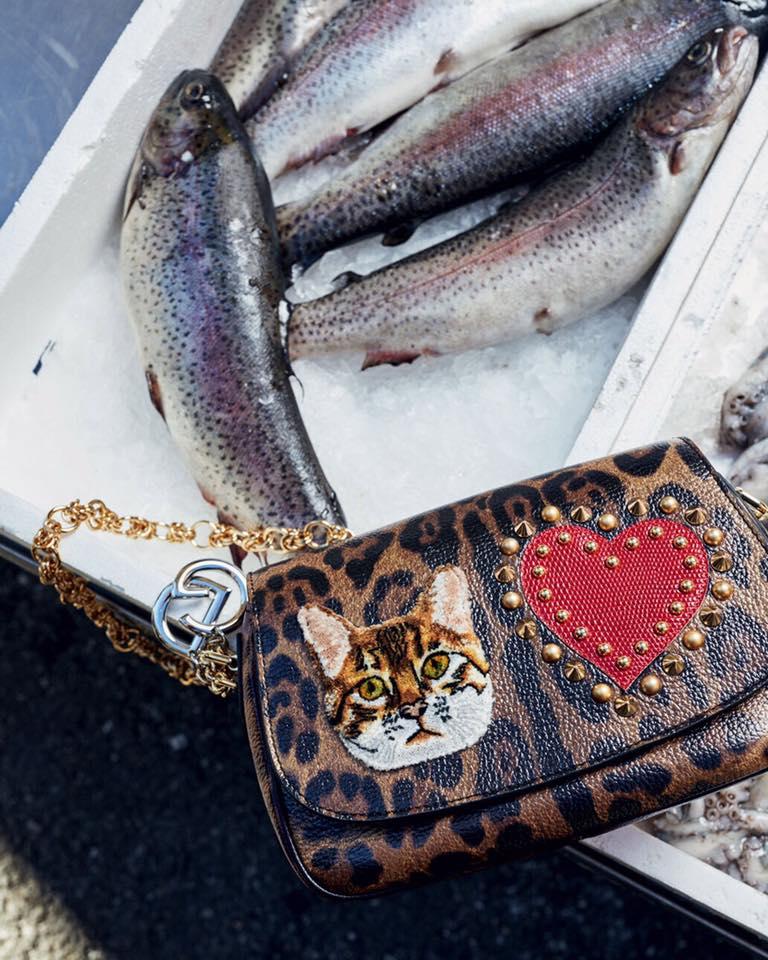 НА РЫНОК В Dolce&Gabbana